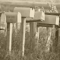 Rural Mail Boxes In Sepia by Ronald T Williams