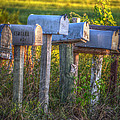 Rural Mail Boxes by Ronald T Williams