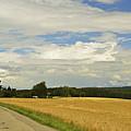 Rural Scene, Near Villingen-schwenningen by Jochen Schlenker