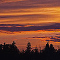 Rural Skyline Sunset by David Kleinsasser