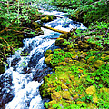 Rushing Mountain Stream by L J Oakes