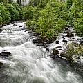 Rushing River by Donna Caplinger