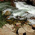 Rushing Water Glen Alpine Creek  by LeeAnn McLaneGoetz McLaneGoetzStudioLLCcom