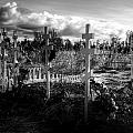 Russian Cemetery by Michele Cornelius