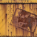Rust In Sign by Donald Schwartz