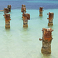 Rusted Iron Pier Dock by David Letts