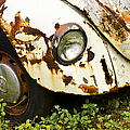Rusted Volkswagen by Carolyn Marshall