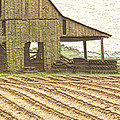 Rustic Barn And Field Rows by Debbie Portwood