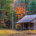Rustic Colors by Charlie Choc