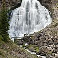 Rustic Falls Yellowstone by Sandra Bronstein
