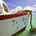 Rustic Fishing Boat Sledge Of Aruba by David Letts