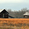 Rustic Illinois by Marty Koch