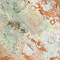 Rustic Impression by Debbie Portwood