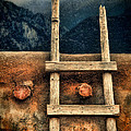 Rustic Ladder On Adobe House by Jill Battaglia