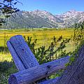 Rustic Moss Covered Pioneer Era Fence In Olympic Valley California by Scott McGuire