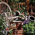 Rustic Retirement by Carol A Commins