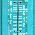 Rustic Thermometer by David  Brown