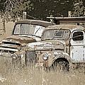 Rustic Trucks by Athena Mckinzie