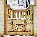 Rustic Wooden Gate In Snow by Jill Battaglia