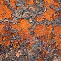 Rusting Away by Ric Bascobert