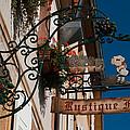 Rustique Flor II by Debbie Karnes