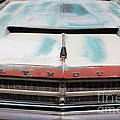 Rusty 1965 Plymouth Satellite . 5d16632 by Wingsdomain Art and Photography