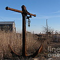 Rusty Anchor  by Nancy Patterson