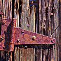 Rusty Barn Door Hinge  by Garry Gay