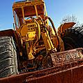Rusty Gold Cat 824 by Gordon Dean II