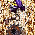Rusty Key And Gear by Garry Gay