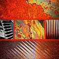 Rusty Metal Canvas by Carol Groenen