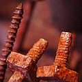 Rusty Screws by Carlos Caetano