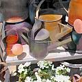 Rusty Watering Cans by Elaine Plesser