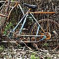 Rusty Wheel Of Bicycle by Chavalit Kamolthamanon