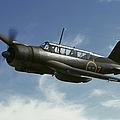 Saab B 17 Dive Bomber Warbird by Daniel Karlsson