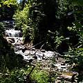 Sable Falls Grand Marais Mi by Michelle Calkins