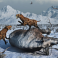 Sabre-toothed Tigers Battle by Mark Stevenson