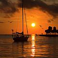 Safe Harbor by Allen Dulaney