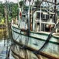 Safe Harbor Lil Arthur by Michael Thomas