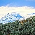 Sage Mountain by Steve McKinzie