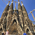 Sagrada Familia - Impressive Church From Gaudi In Barcelona by Matthias Hauser