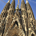 Sagrada Familia Barcelona Spain by Matthias Hauser