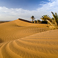 Sahara Desert At M'hamid, Morocco, Africa by Ben Pipe Photography