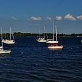Sail Away by Sara Edens