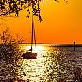 Sail Away by Shannon Harrington