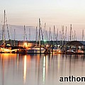 Sail Boat On The River by Anthony Walker Sr