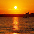 Sail Off Into The Sunset by Andrew Pacheco