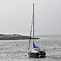 Sailboat In Maine Fog by Terri Winkler