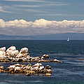 Sailboat In Monterey Bay by Endre Balogh