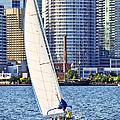 Sailboat In Toronto Harbor by Elena Elisseeva
